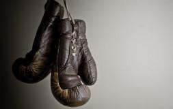 Бокс в технике Ниппон Кэмпо