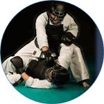 Японский рукопашный бой Ниппон Кэмпо