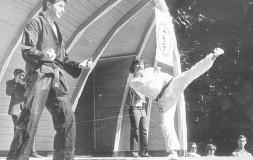 Рукопашный бой в СССР : самбо и каратэ(дополнено)