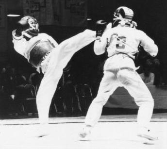 Соревнования Ниппон кэмпо 1976