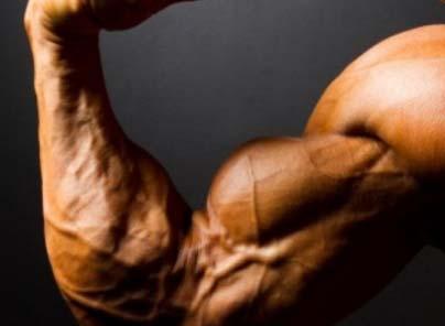 Развитие физической силы