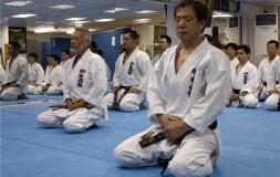 Медитация каратэ
