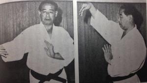 Мастер Саваяма демонстрирует технику блокировки взятой из каратэ