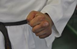 Закаленный кулак мастера Ниппон кэмпо