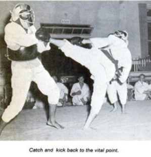 Catch and kick Nippon kempo
