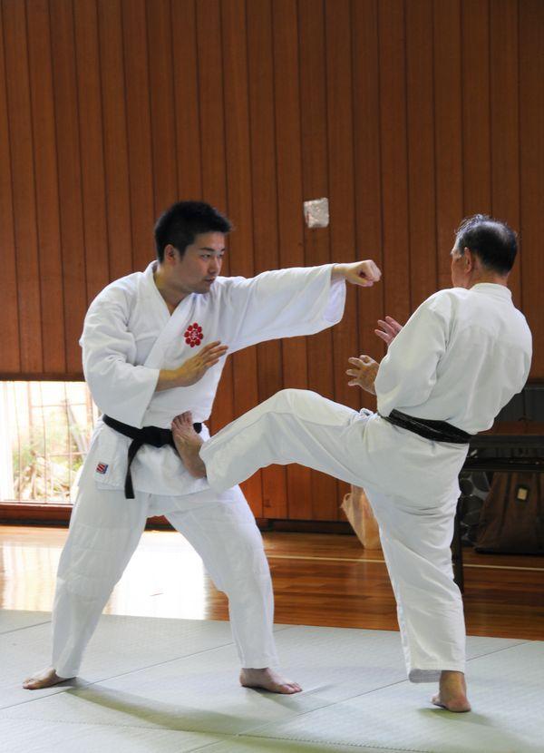 Hideo Doya and Akiro Aya