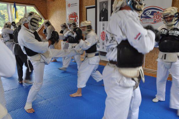 Тренировка рукопашного боя. Ниппон Кэмпо. Гассюкугэйко 2021