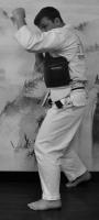 Джодан камаэ - высокая позиция